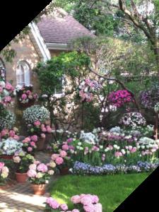Дизайн цветников в Краснодаре