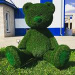 Зеленый слон-7